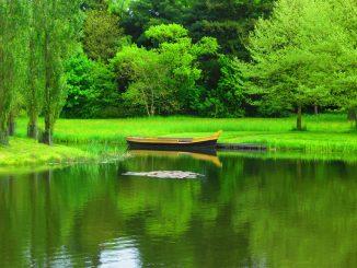 Teich See Tümpel Natur Idyll Klima