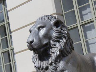 MLU Löwengebäude